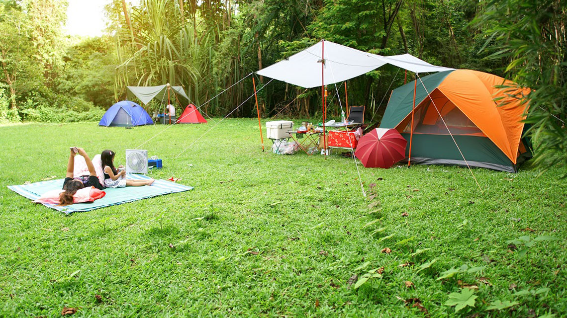 Ecotourism the trend for family holidays